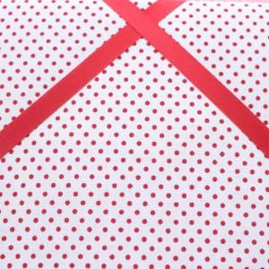 Cadre barrettes plumetis rouge